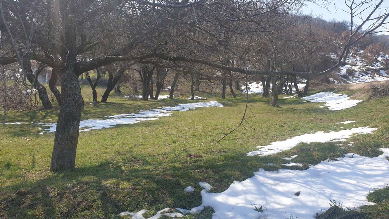 Пролећни снег