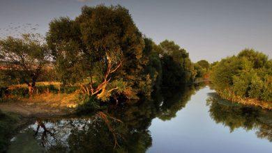 Река Ситница